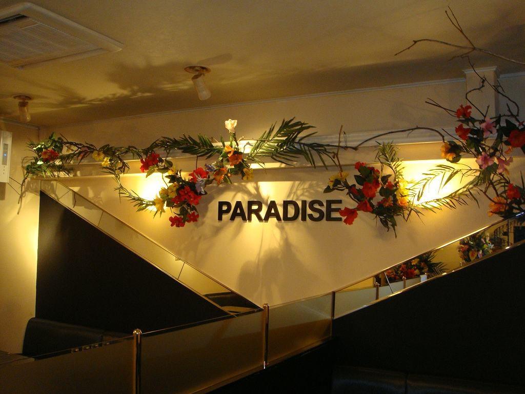 夏の装飾、ハイビスカス・ディスプレイ